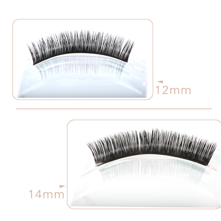 lashes extensions02.jpg