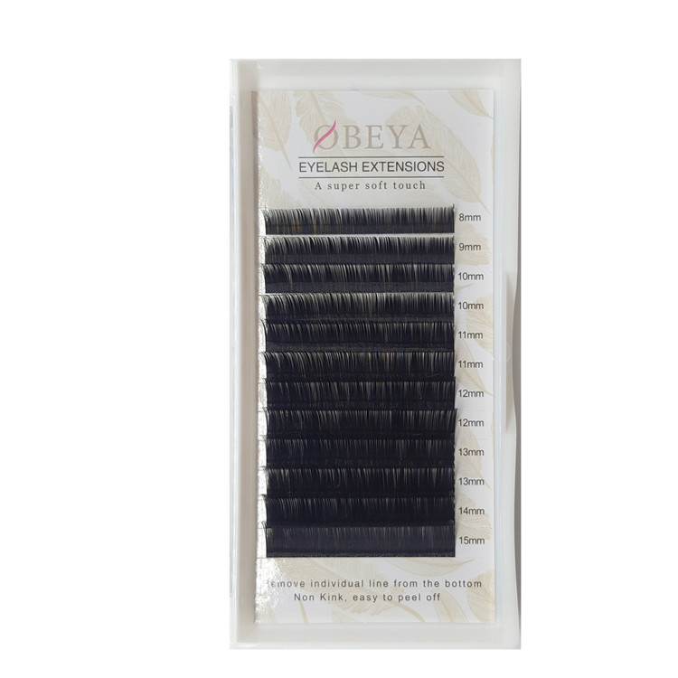 Russian Volume Eyelash Extensions 0.05mm, 0.07mm Mix Tray 6-16mm Wholesale Price FM011